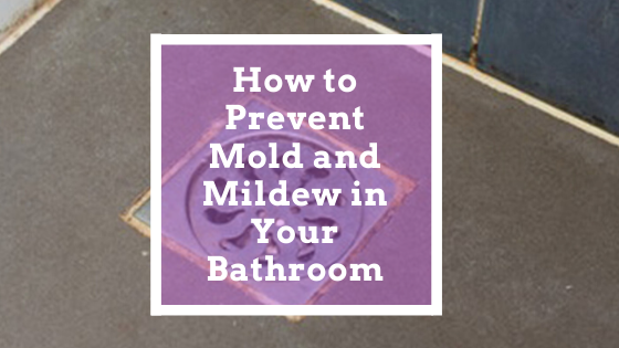 How to Prevent Mold and Mildew in Your Bathroom
