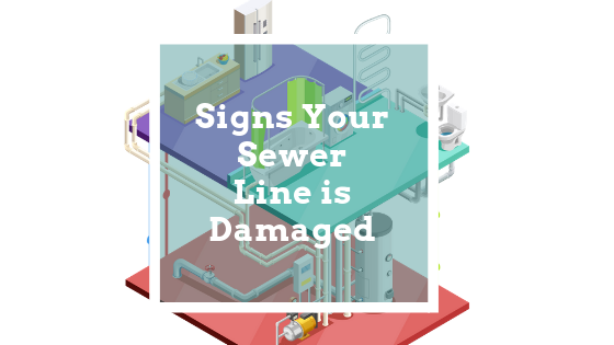 Signs Your Sewer Line is Damaged