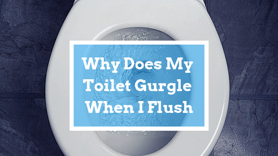 toilet gurgle flush
